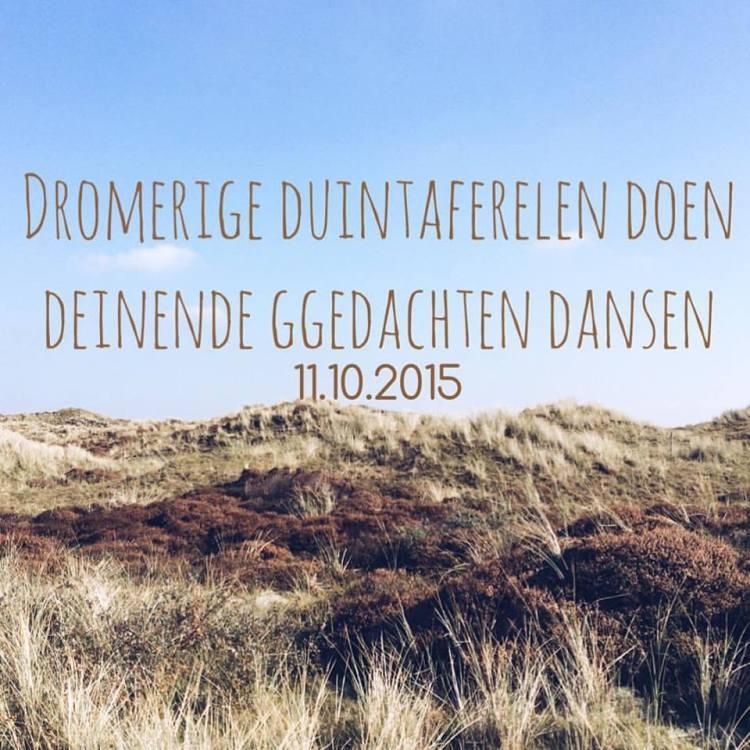 Het SchrijfCafé - Six Word Story - 11.10.2015 - Dromerige duintaferelen doen deinende gedachten dansen